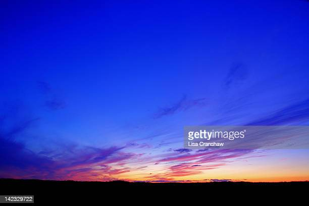 silhouette of beach - lisa cranshaw stock pictures, royalty-free photos & images