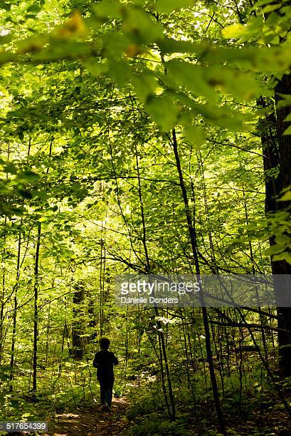 Silhouette of boy walking in the woods