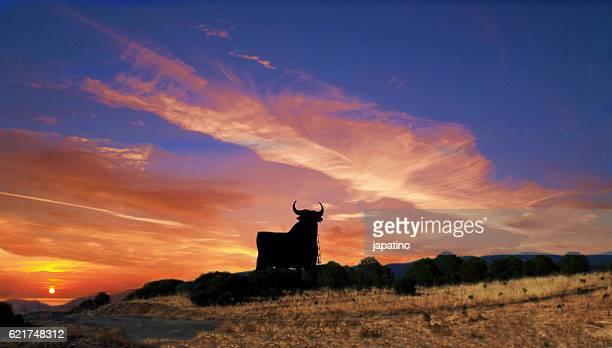 Silhouette of bull, symbol of Spain
