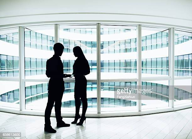 Silhouette of business colleagues meeting in modern office space