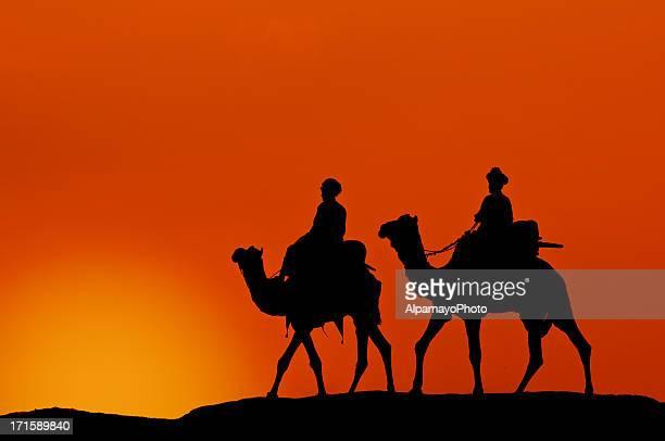 silhouette von kamel karawane durch die wüste bei sonnenuntergang (ii) - camel active stock-fotos und bilder
