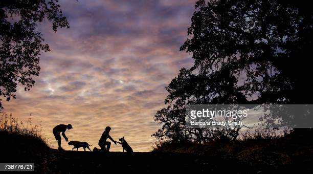 Silhouette of Caucasian couple with dogs in field