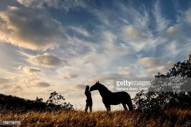 silhouette of caucasian woman and horse standing in landscape - lady barbara stock-fotos und bilder
