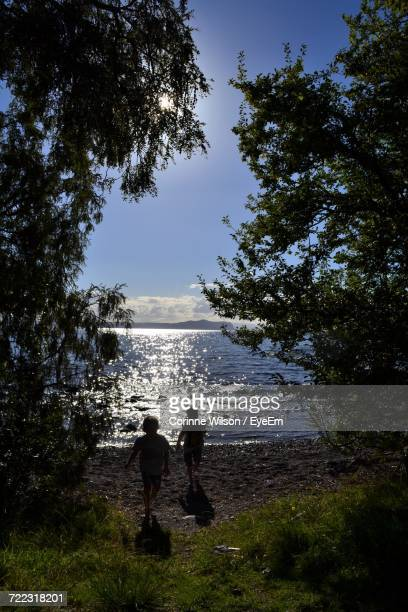 silhouette of children running by lake seen through trees - corinne paradis photos et images de collection