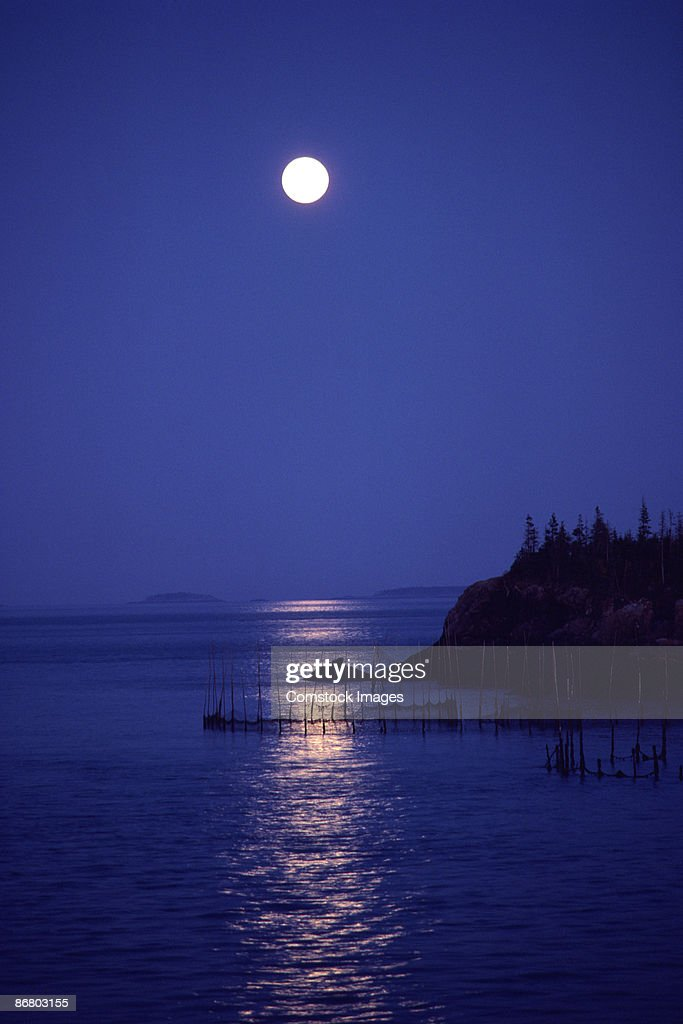 Silhouette of coastline at night : Stock Photo
