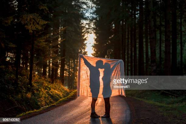 silhouette of couple holding blanket kissing on country road in forest - freaky couples stock photos and pictures