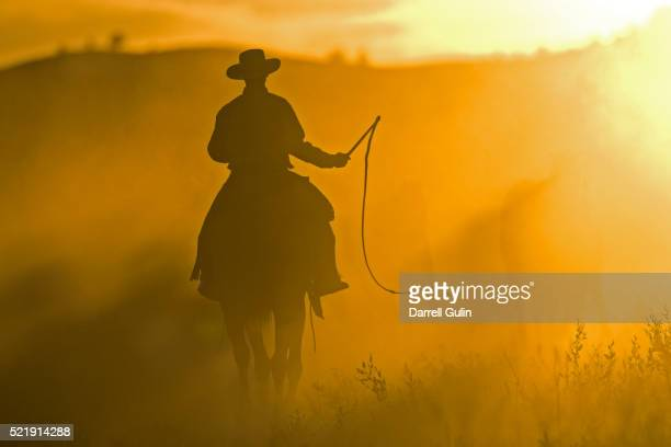 silhouette of cowboy at sunset - cowboy stock pictures, royalty-free photos & images