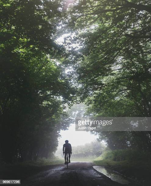 Silhouette of cyclist on woodland road