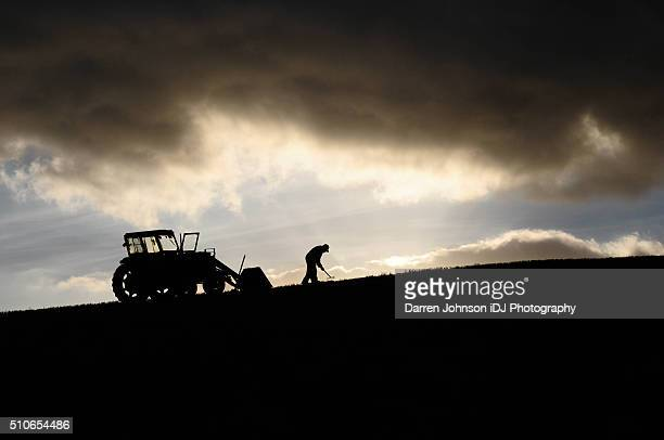 silhouette of farmer working and tractor up high in the clouds - effort stock pictures, royalty-free photos & images