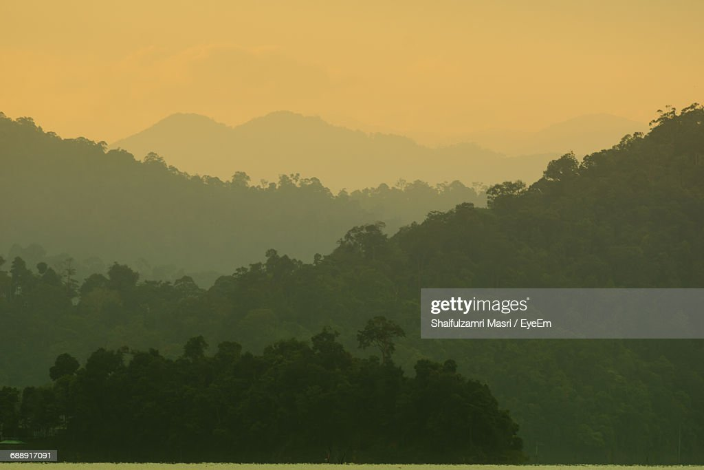Silhouette Of Forest Against Sky During Sunset : Stock Photo