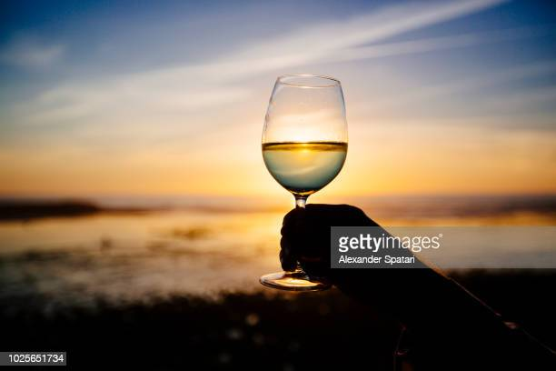 silhouette of glass with white wine against sunset at the ocean beach - winery stock pictures, royalty-free photos & images