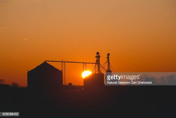 silhouette of grain storage bins - dan sherwood photography stock pictures, royalty-free photos & images