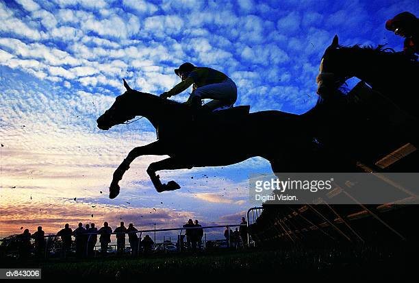 silhouette of horses jumping a steeplchase - horse racing stock pictures, royalty-free photos & images
