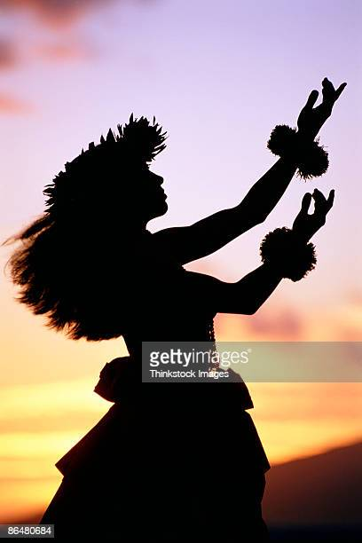 silhouette of hula dancer - hula dancer stock pictures, royalty-free photos & images
