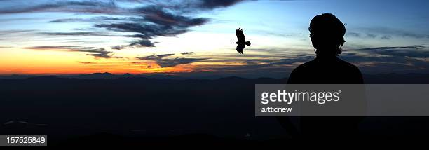 silhouette of man and eagle on top hill - eagle flying stock pictures, royalty-free photos & images