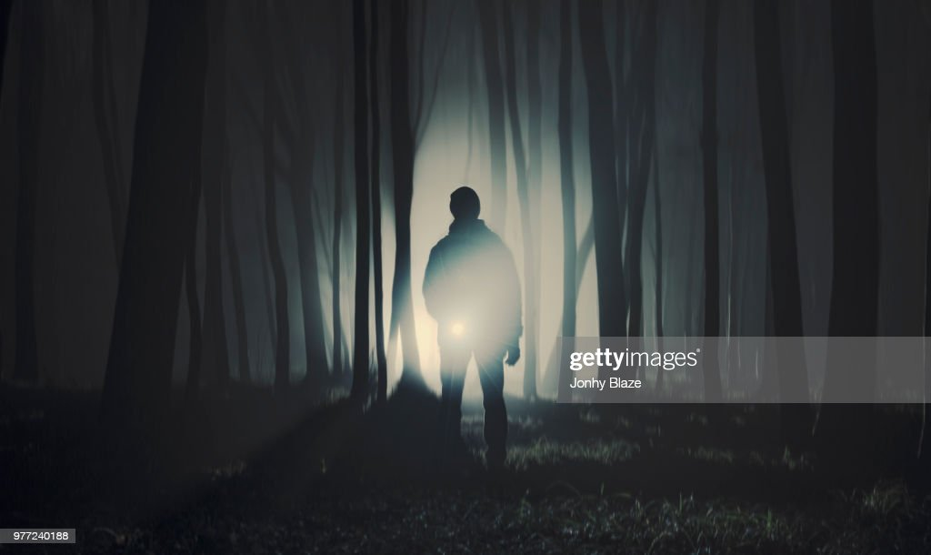 Silhouette of man standing in dark forest : Stock Photo