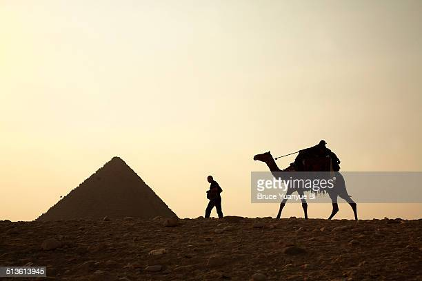 silhouette of man with a camel and pyramid - ancient stock pictures, royalty-free photos & images