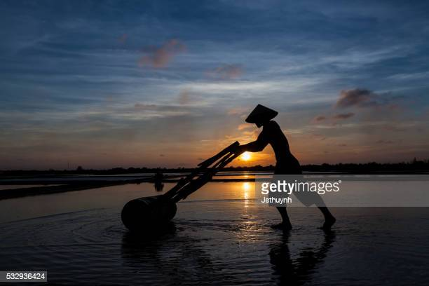 silhouette of Man working on salt field at dawn