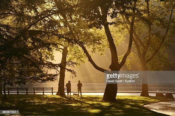 Silhouette Of Men And Dog In Central Park