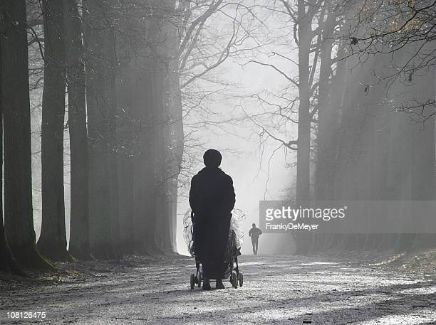 Silhouette of Mother Pushing Stroller Through Misty Forest