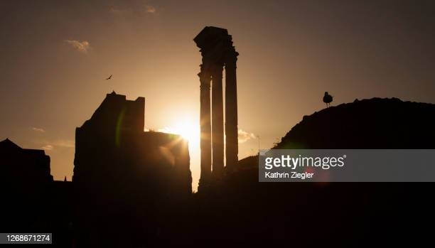 silhouette of old ruins at the roman forum at sunset, rome, italy - ancient rome stock pictures, royalty-free photos & images