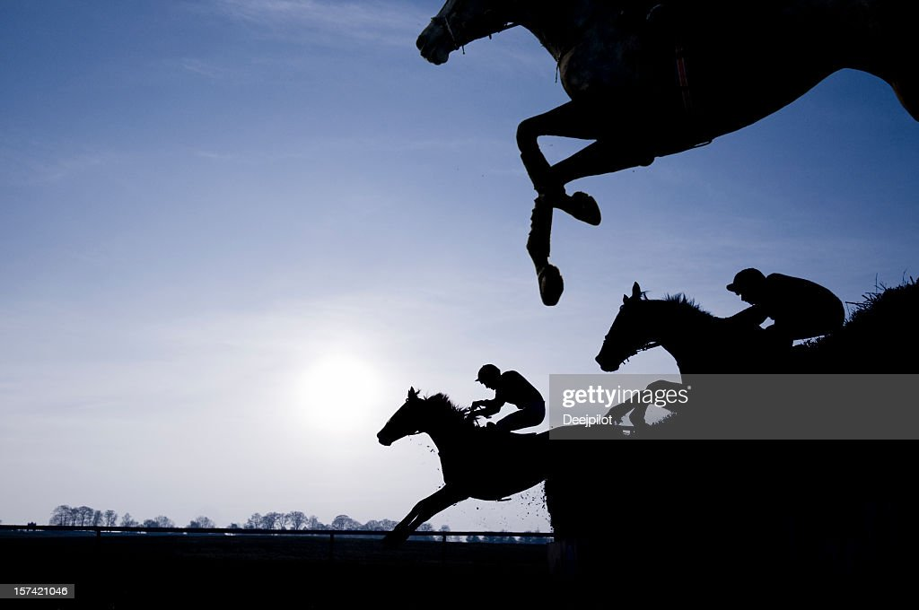 Silhouette of Race Horses Jumping a Fence : Stock Photo