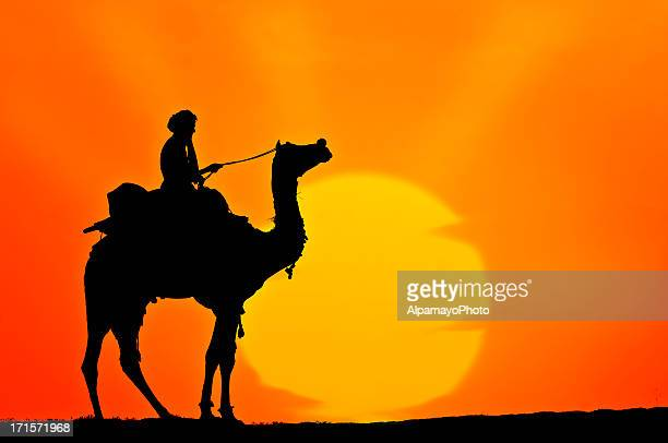 Silhouette of Rider and Camel in the Desert (Sunset) (XIV)