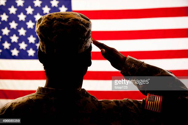 silhouette of soldier saluting the american flag - armistice day stock photos and pictures