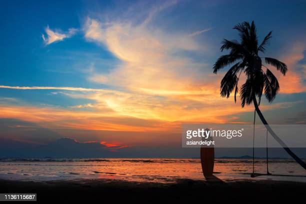 silhouette of surfboard and coconut palm tree on the beach at sunset time with colorful sky. - hawaii islands stock pictures, royalty-free photos & images