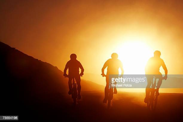 Silhouette of Three Cyclists at Sunset