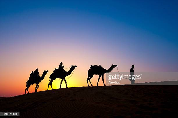 Silhouette of three people on camel safari, Thar Desert National Park, Jaisalmer, Rajasthan, India