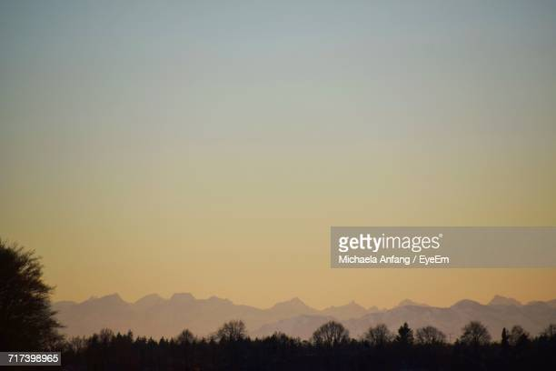 silhouette of trees against sky - anfang stock pictures, royalty-free photos & images