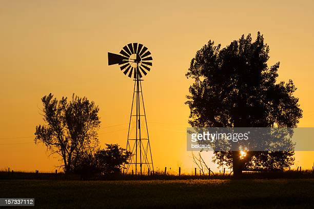 silhouette of trees and windmill over a prairie sunrise - nebraska stock photos and pictures