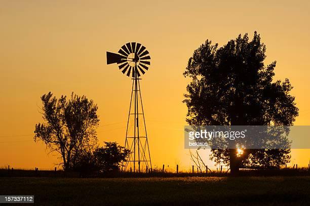 pradaria nascer do sol - kansas imagens e fotografias de stock