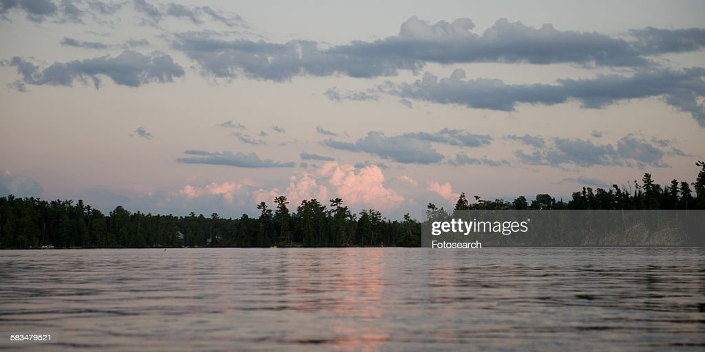 Silhouette of trees at lakeside : Stock Photo