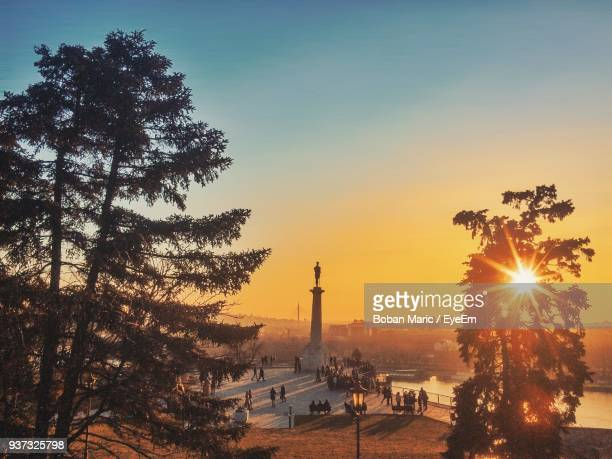 silhouette of trees at sunset - belgrade serbia stock pictures, royalty-free photos & images