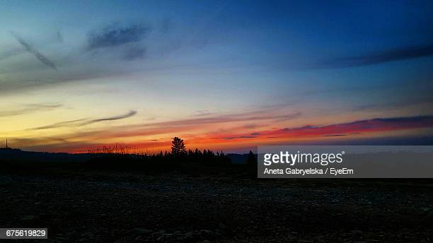 silhouette of trees on landscape at sunset - aneta eyeem stock pictures, royalty-free photos & images