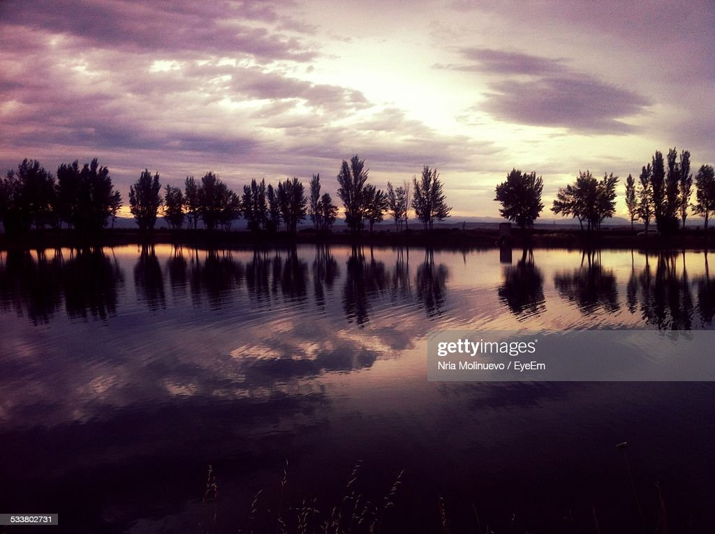 Silhouette Of Trees Reflected On Calm Lake At Sunset : Foto stock