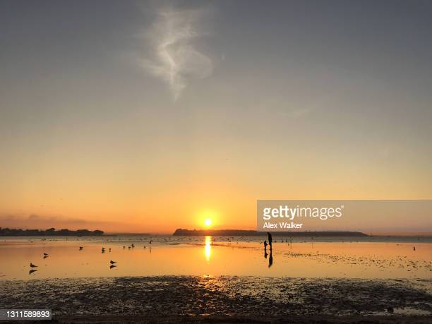 silhouette of two distant figures on a beach at sunset. - プール市 ストックフォトと画像