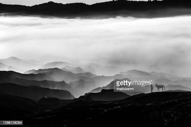 silhouette of unidentified local people or bromo horseman at mountainside of mount bromo. - shaifulzamri 個照片及圖片檔