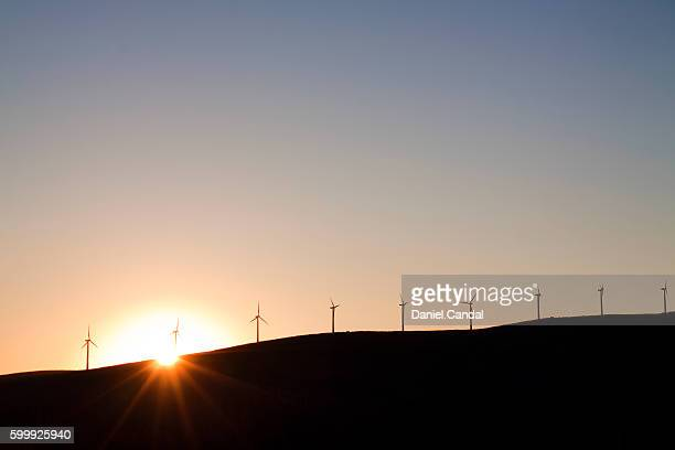 silhouette of wind turbines at sunset, galicia (spain) - indigo casares fotografías e imágenes de stock