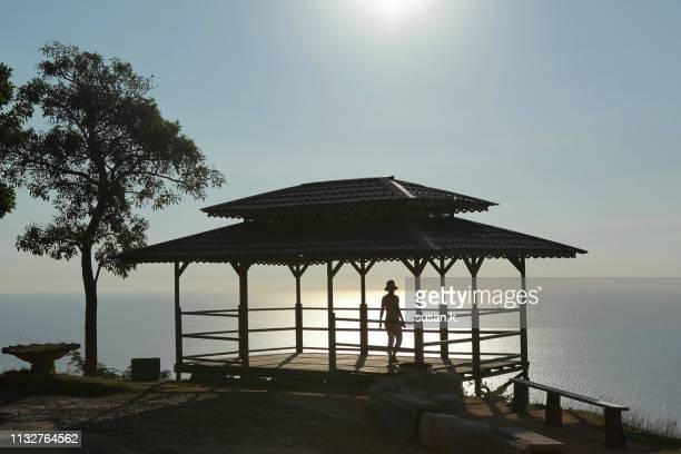 silhouette of woman enjoying idyllic seascape. - bogor stock pictures, royalty-free photos & images