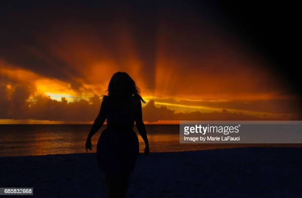 silhouette of woman on the beach with golden sunset - marie lafauci stock pictures, royalty-free photos & images