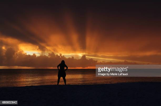 silhouette of woman posing on the beach at sunset - marie lafauci stock pictures, royalty-free photos & images