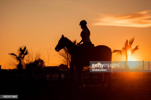 silhouette of woman with long hair riding horse at sunset - female hairy arms stock photos and pictures