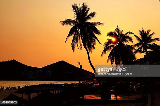 silhouette palm trees against orange sky on beach - hainan island stock pictures, royalty-free photos & images