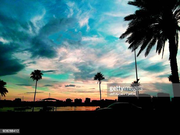 Silhouette Palm Trees Against Sky During Sunset