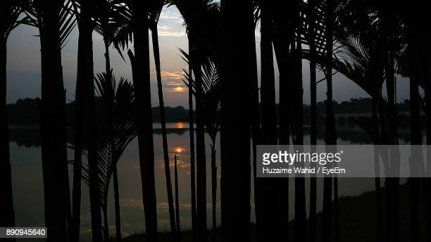 Silhouette Palm Trees By Lake Against Sky At Sunset