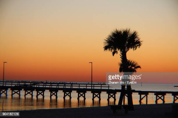 Silhouette Palm Trees On Beach Against Clear Sky During Sunset