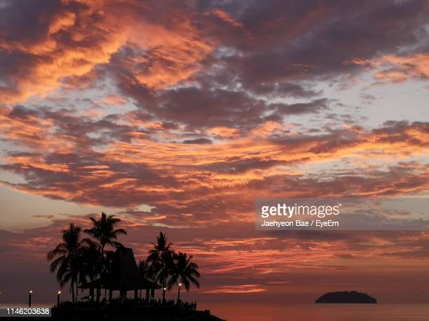 silhouette palm trees on beach against sky at sunset - kota kinabalu stock pictures, royalty-free photos & images